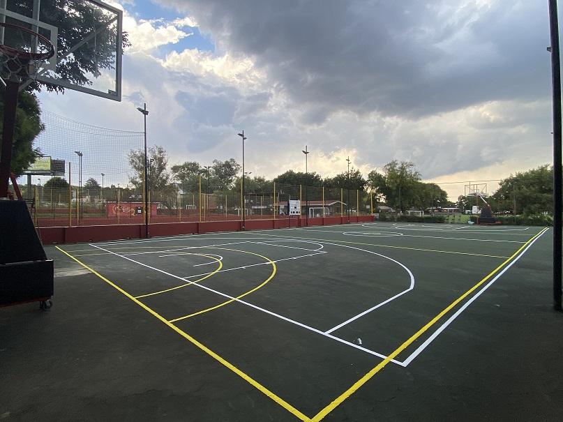 Basketball 02 Home